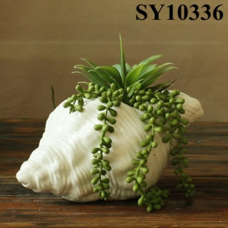 Unique ceramic conch shaped planter