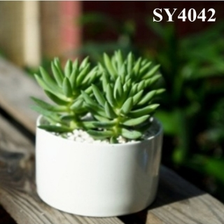 3.5 inches round mini ceramic flower pot