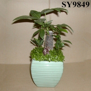 Decorative green office flower pot