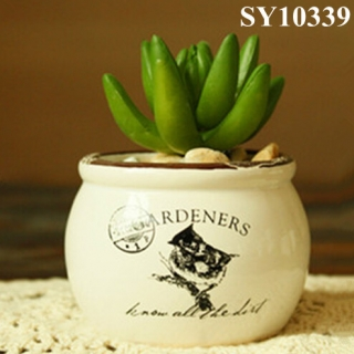 Popular product succulent mini ceramic pots