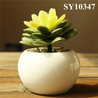 Plain white porcelain planter pots