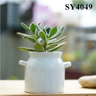 3.8 inches white mini pot flower
