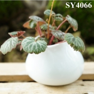 Hot pot for sale ceramic white small pot