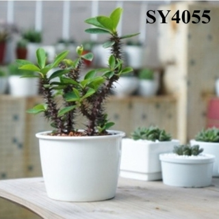 5.5 inches ceramic mini grow pots