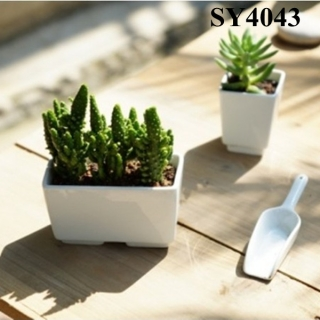 5 inches white cactus mini pot