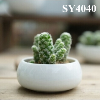 3 inches round mini plant pots